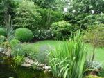 Gartenpflege Oberkirch